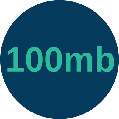 Copy of how much is a 100mb leased line?