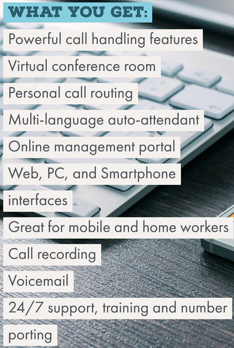 Lily Comms VoIP features