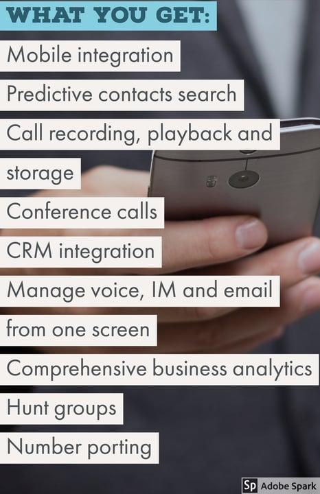 Mitel VoIP features