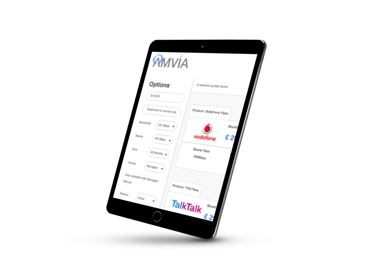 amvia business voip fibre